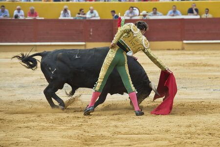 A matador fighting in a typical Spanish bullfight