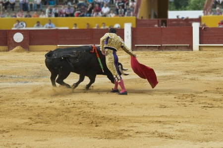 corrida: Un combat matador dans une corrida espagnole typique.