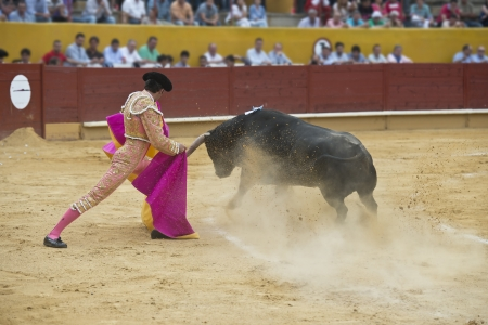 gaff: Typical Spanish bullfight in a traditional bullring