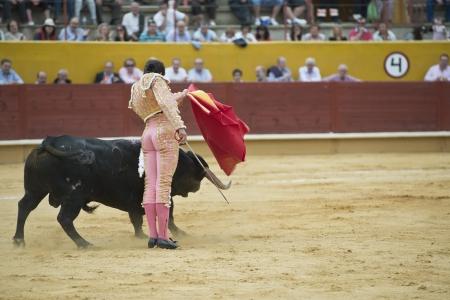 bullfight: Typical Spanish bullfight in a traditional bullring