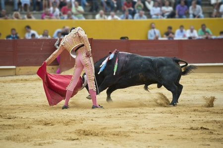 bull fight: Typical Spanish bullfight in a traditional bullring