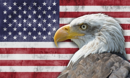 白頭ワシとアメリカ合衆国の国旗 写真素材 - 15323538