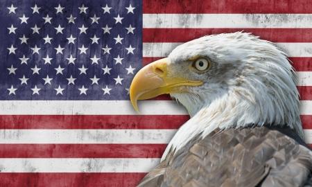 aguila americana: Bandera de los Estados Unidos de Am�rica con el �guila calva Foto de archivo