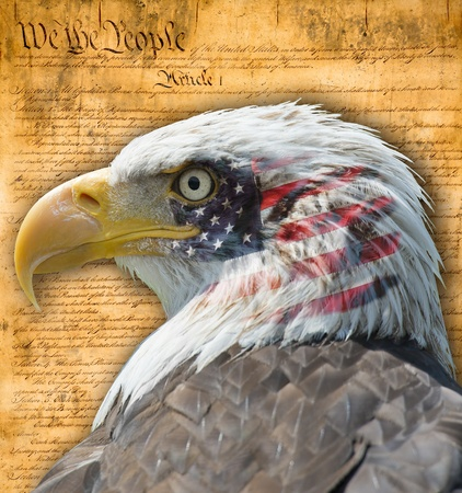 constitution: American flag with the bald eagle and  some historic documents  Stock Photo