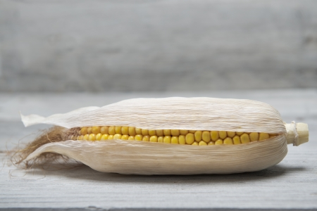 mealie: Dried corn ear on an old wooden background Stock Photo