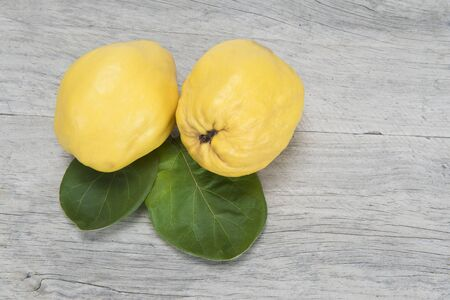 Premium fresh quinces freshly harvested to cook.  photo