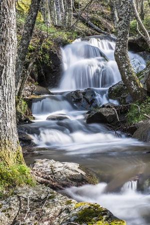 torrent: Cascades on a mountain river with a silky effect on the water that conveys a sense of relaxation.