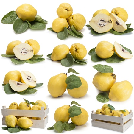 Set of photographs of quinces with leaves isolated over a white background photo