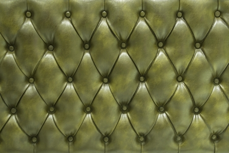 plain button: Genuine leather upholstery background for a luxury decoration