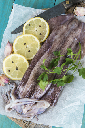 molluscs: Fresh squids and some ingredients on the cutting board in the kitchen