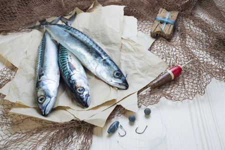 Still life about sportive fishing for mackerel and some related items