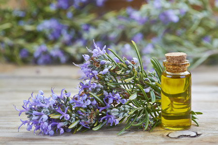essential oil: Rosemary essential oil in a small glass vial and plant with flowers on a wooden background Stock Photo