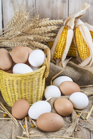 henhouse: Basket with fresh range eggs and cereals to feed hens in the hen house Stock Photo