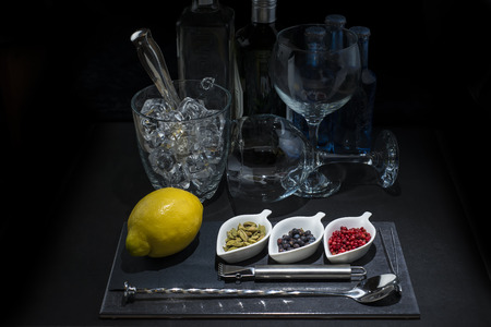 Utensils and ingredients to prepare and garnish a gin and  tonic photo