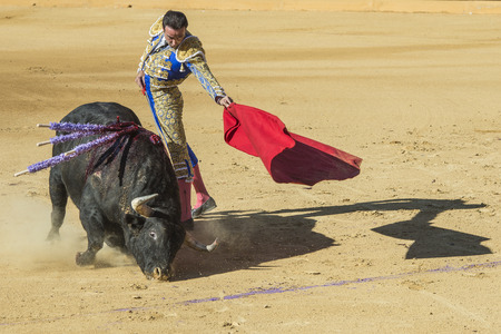 AVILA, SPAIN - JUNE 15  Enrique Ponce fights in the bullfight of Avila, a city near to Madrid in the middle of Spain in June 15, 2014