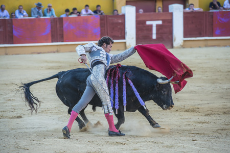 AVILA, SPAIN - JUNE 15: César Jiménez fights in the bullfight of Avila, a city near to Madrid in the middle of Spain in June 15, 2014.