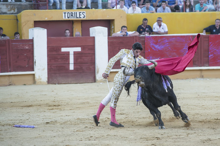 AVILA, SPAIN - JUNE 15: Alejandro Talavante fights in the bullfight of Avila, a city near to Madrid in the middle of Spain in June 15, 2014.