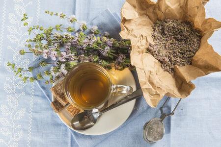 mentha: Mentha infusi�n pulegium y art�culos de prepararlo