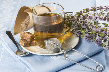 teas: Mentha pulegium infusion and items to prepare it Stock Photo