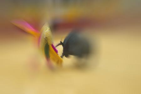 corrida de toros: Dibujo abstracto de colores sobre corrida de toros con un torero luchando con un toro