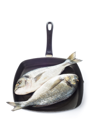 sparus: Two raw gilt-head sea bream fishes on a pan isolated over a white background Stock Photo