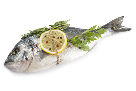 sparus: Raw Gilt-head bream fish with spices and herbs isolated on a white background Stock Photo