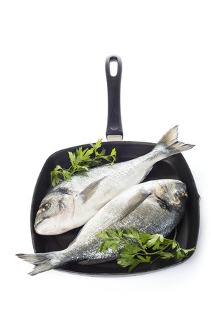 gilthead bream: Two raw gilt-head sea bream fishes on a pan isolated over a white background Stock Photo