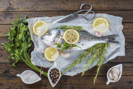 Fresh gilt-head sea bream fish with herbs and spices on a bakery release paper photo