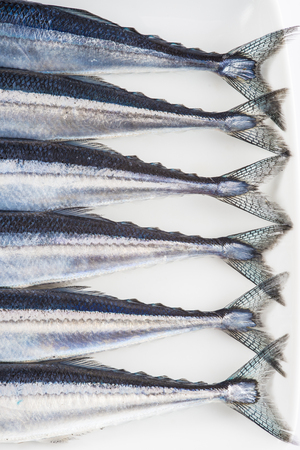 omega 3: fresh needlefish with omega 3 for a healthy diet