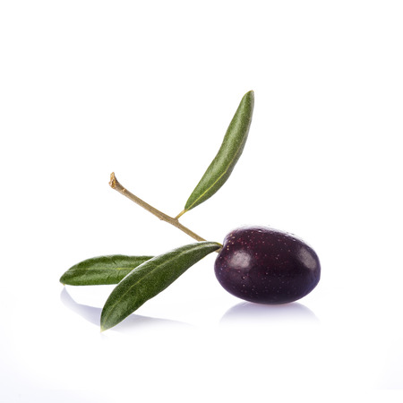 kalamata: Premium raw olive with its leaves and branch on a white background