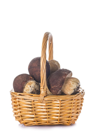 cep: Boletus edulis in a wicker basket isolated on a white background