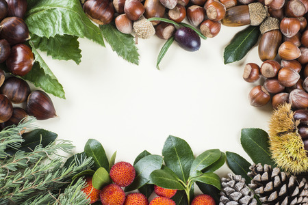 Frame with space for text, with naltural autumn and Christmas items fruits and nuts photo