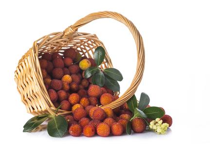 Basket with arbutus unedo fruits isolated on a white background photo