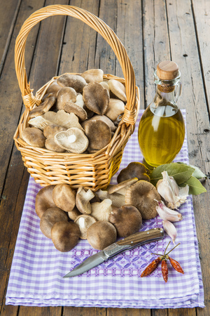 Basket with mushrooms, olive oil and ingredients for cooking on the table of the kitchen photo