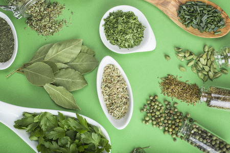 dried herbs: Assortment of green herbs and spices on a green background
