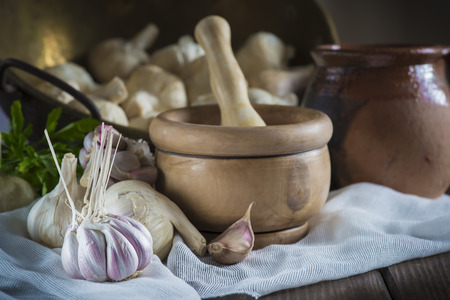 kitchen spanish: Still life with garlic bulbs and cloves, mortar and pestle on the table of the kitchen