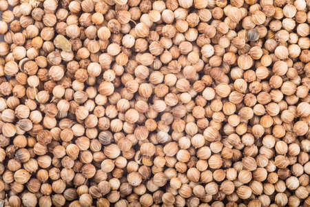 coriander seeds: Background made of coriander seeds showing its texture