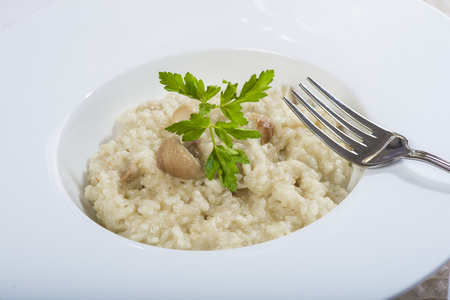 porcini: Porcini mushroom risotto with parmesan cheese decorated with parsley Stock Photo