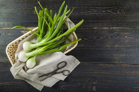 Fresh spring onions and old scissors on a black wooden background