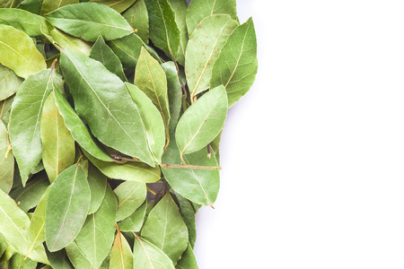 dried herbs: Dried laurel leaves on a white background with a copy space
