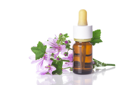 medicinal plants: Dropper bottle with mallow malva extract or essential oil isolated on a white background