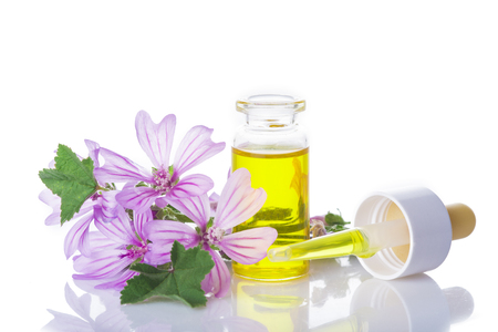 plantas medicinales: frasco gotero con extracto de malva malva o aceite esencial aislado en un fondo blanco