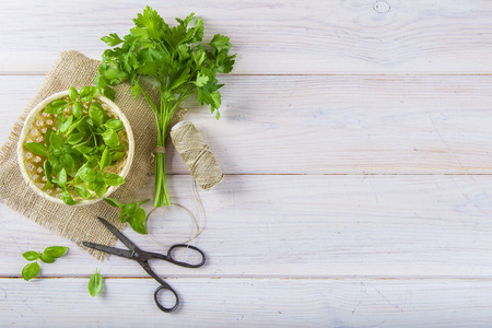 buch: Fresh basil leaves in a basket and a bunch of parsley with an old scissors