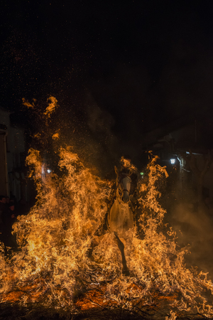 Men rides his horses through the fire in the traditional celebration of Saint Anthonys day in the small village of San Bartolome de Pinares in Spain Stock Photo
