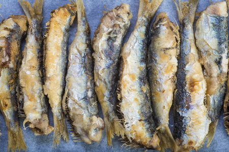 Fried sardines or pirchards on a slate background