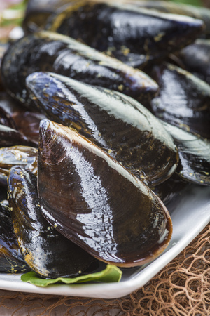 Fresh and alive mussels for cooking cleaned and ready to be steamed
