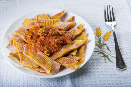 Garganelli shape pasta with authentic bolognese sauce made of minced meat, tomato and vegetables 写真素材