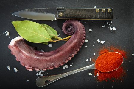 Cooked octopus over a slate plate decorated wit spices