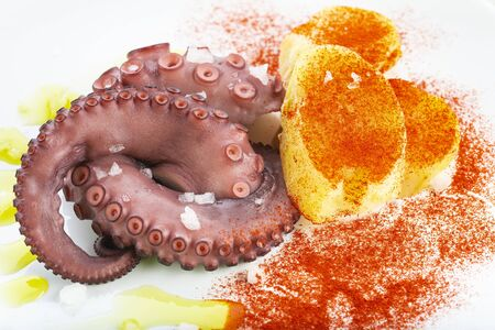 Cooked octopus tentalce isolated on a white background and decorated Фото со стока