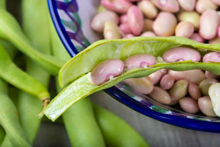 Getting beans from their pods and preparing them for cooking in the kitchen